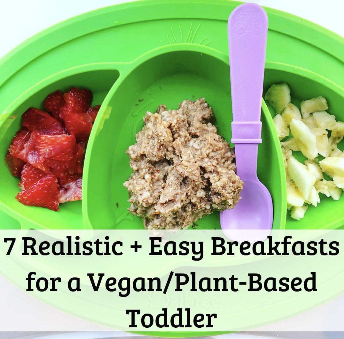 7 Realistic Easy Breakfasts For Vegan Plant Based Toddler